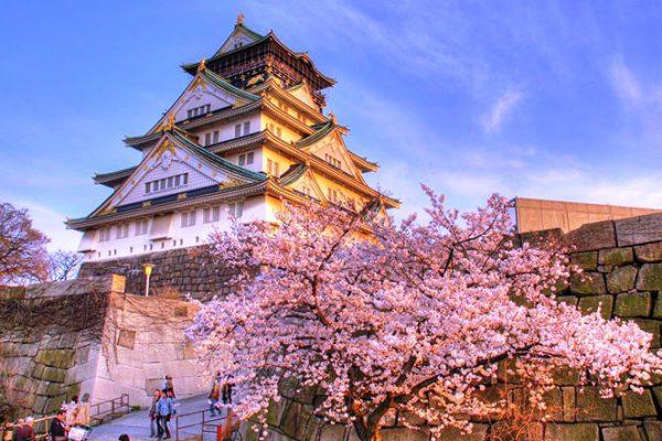 Vì sao bạn nên chọn Nhật Bản là nơi bắt đầu sự nghiệp